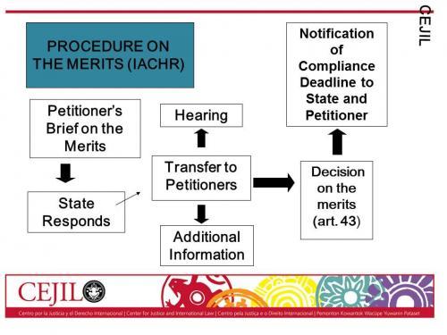 IACHR Proceedings 2