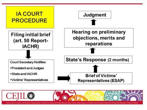Inter-American Court Proceedings